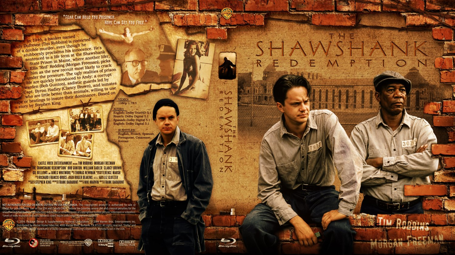 an analysis of hope in the shawshank redemption Get an answer for 'in shawshank redemption what does the library represent to  andy (time,education,friends,music,hope) ' and find homework help for other.